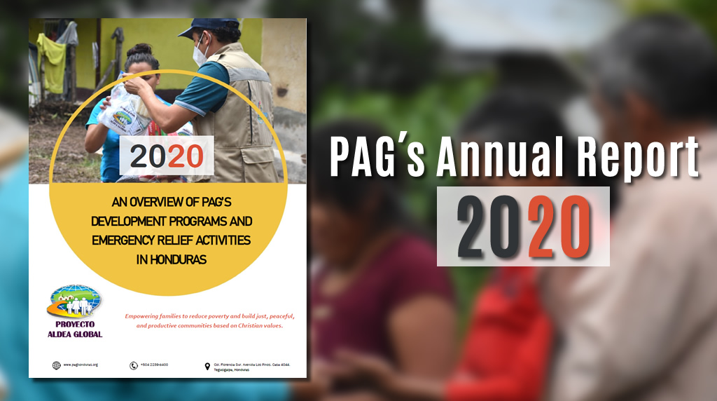 PAG Annual Report 2020